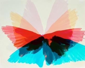 Doug Fogelson - Woodpecker, Wings