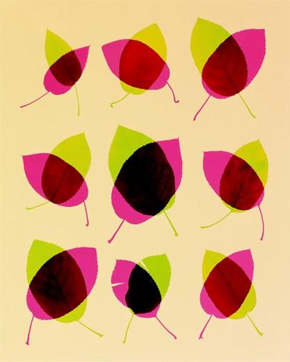 Doug Fogelson - Leaves, 2
