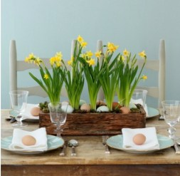 Ph. Pinterest http://blog.williams-sonoma.com/spring-centerpieces-with-blue-eggs-daffodils/