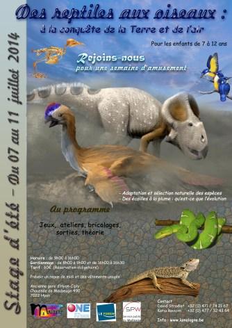 Du 07/07 au 11/07 : Des reptiles aux oiseaux : à la conquête de la terre et de l'air