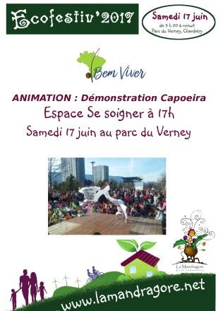 Animation - Capoeira - Ecofestiv 2017