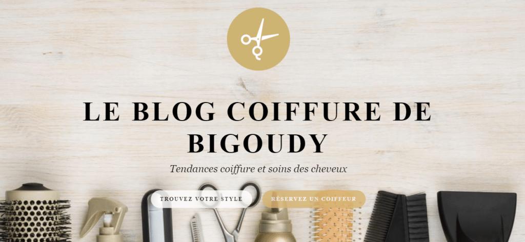 Bigoudy-Blog-1024x472.png