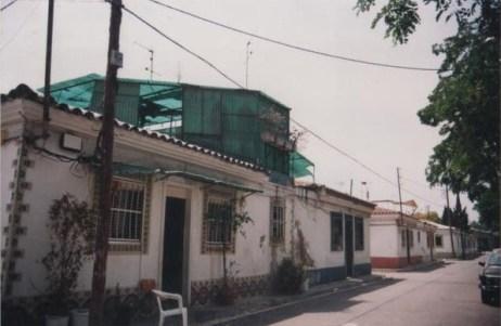Jordi Dot, 1995.