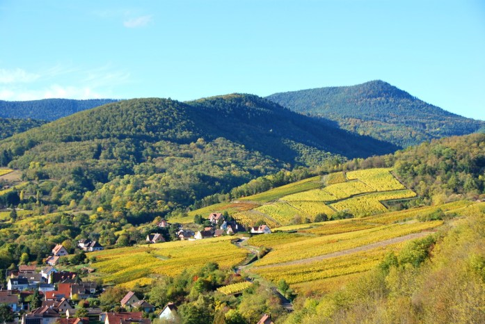 La Marinière en Voyage - visiter Colmar en un jour - vignoble alsacien