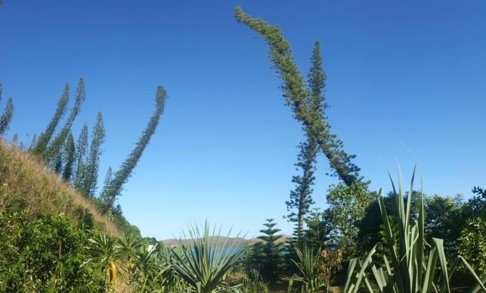 Nouvelle Calédonie - la baie des Tortues