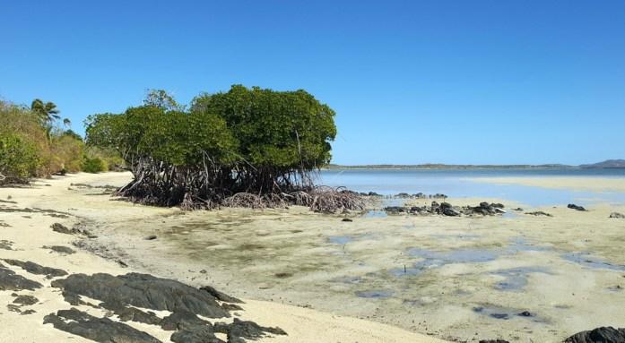 Nouvelle Calédonie - l'extrême nord de la grande terre