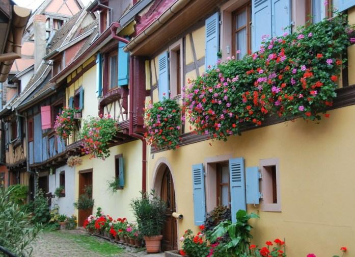 Découvrir Eguisheim en Alsace - géraniums