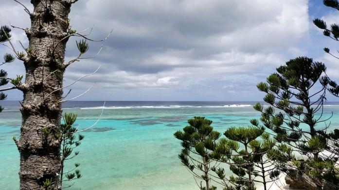 Îles de Nouvelle Calédonie - plage et forêt à Maré