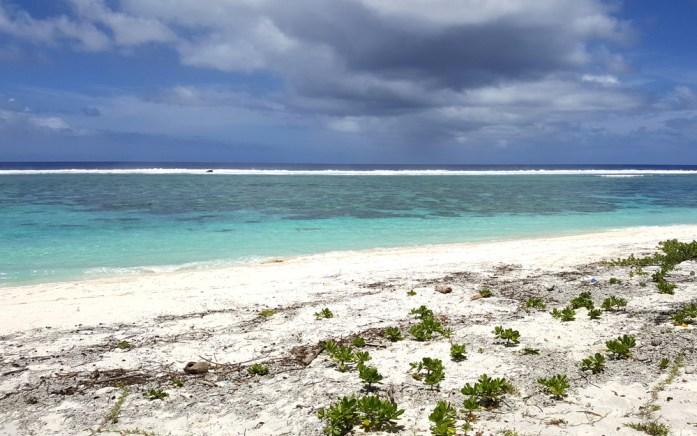 Îles de Nouvelle Calédonie - Maré