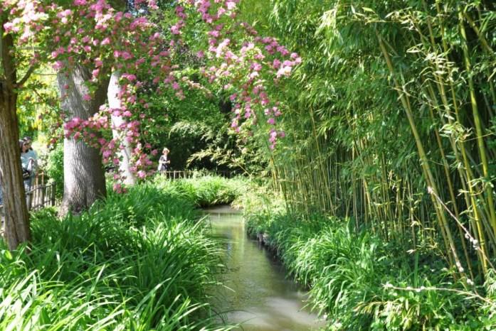 Jardin de Monet à Giverny - bambous