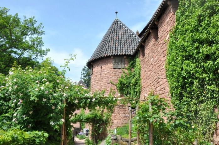 Le Haut Koenigsbourg en Alsace - jardin