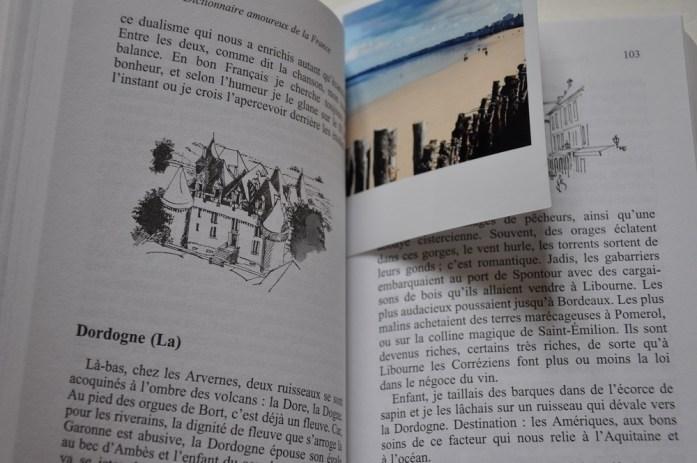 Dictionnaire amoureux de la France de Denis Tillinac