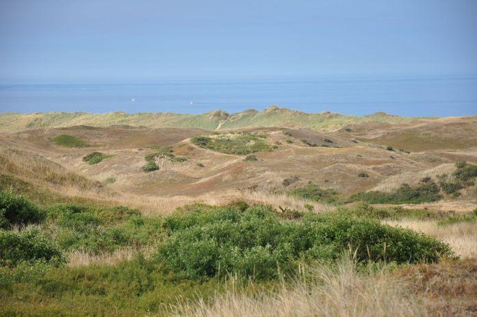 Route des Caps de la Manche - Dunes de Biville