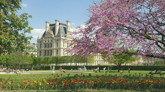 Le jardin des Tuileries au printemps
