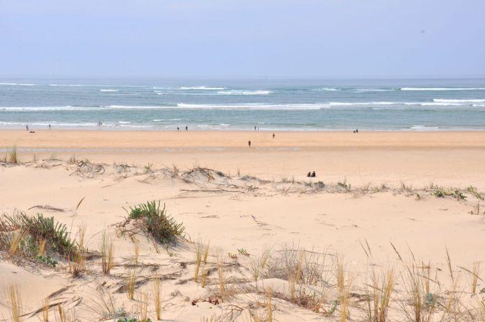 Visiter le Cap Ferret à vélo - les plus belles plages