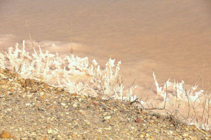 Camargue : salins roses d'Aigues-Mortes
