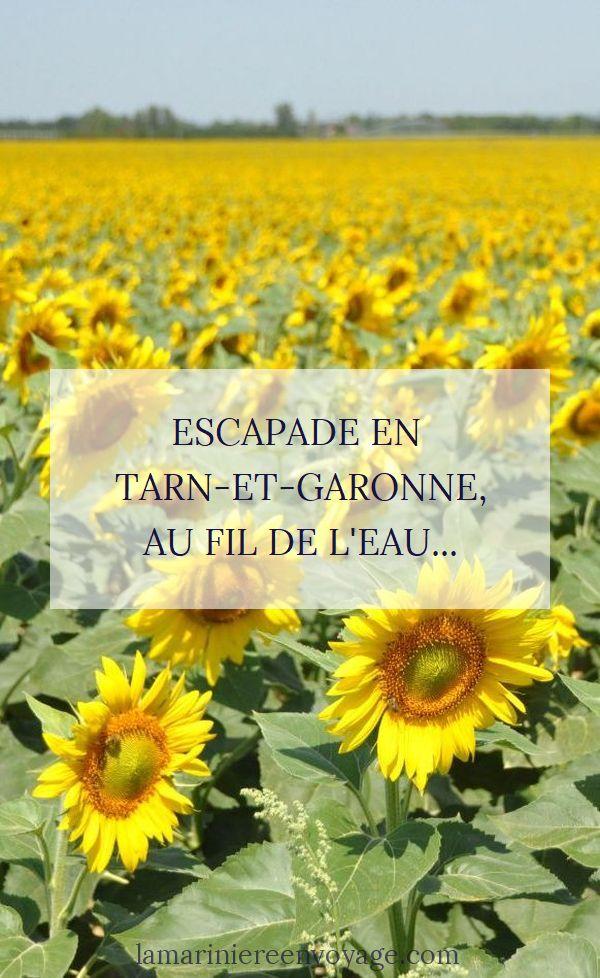 Escapade en Tarn-et-Garonne : balade au fil de l'eau de Montauban à Moissac