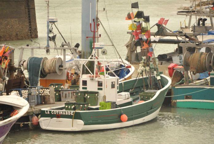 Île d'Oléron : port de la Cotinière