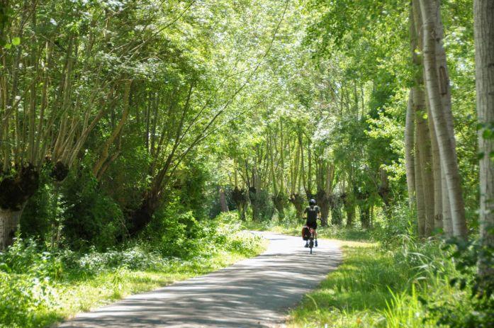A vélo dans le Marais poitevin - Blog La Marinière en Voyage
