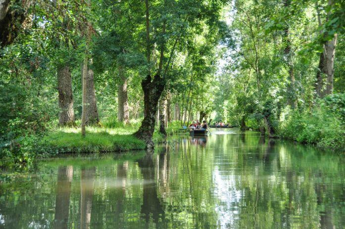 Balade dans le Marais poitevin - Blog La Marinière en Voyage