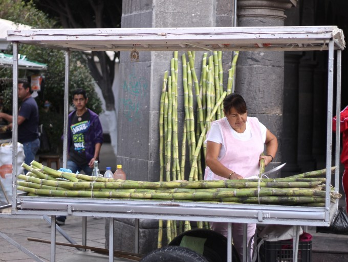 Sugar Cane Stand in Tlaquepaque