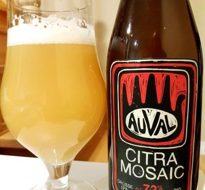 Citra Mosaic d'Auval
