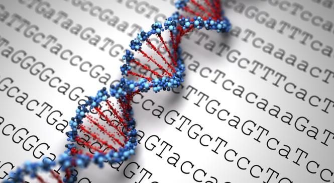 Keepsake or DNA
