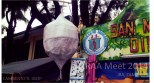 San Marcelino, Zambales' signature produce: Singkamas, a root crop.