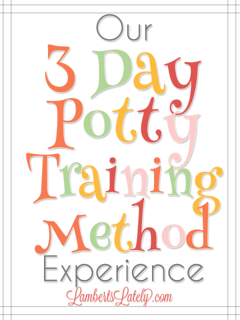 Great resource if you're trying the 3 Day Potty Training Method with your toddler!