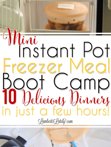 Mini Instant Pot Freezer Meal Boot Camp: 10 Crowd-Pleasing Recipes!