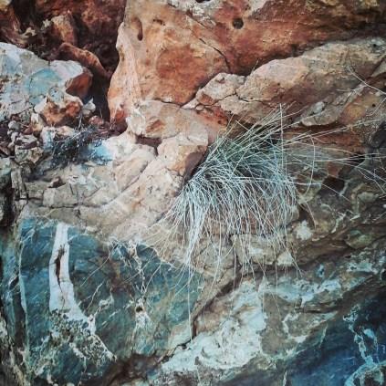 Detalle de las rocas del lugar