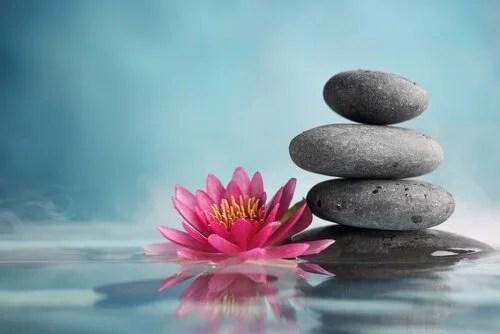 29 Frasi Zen Per Vivere In Modo Diverso La Mente è