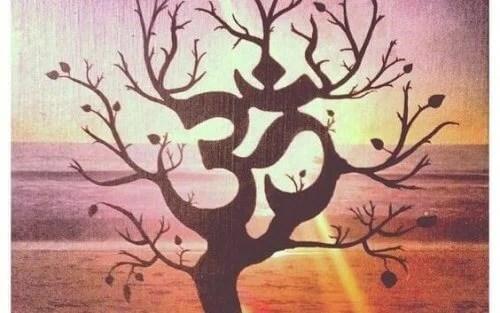 albero karma