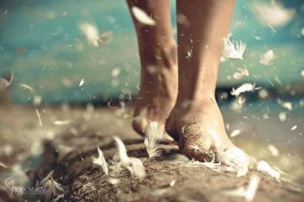 Caminante con plumas en los pies