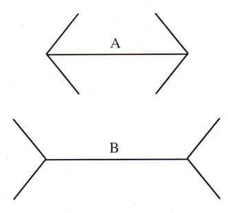 ¿Cuál de las dos líneas es más larga?