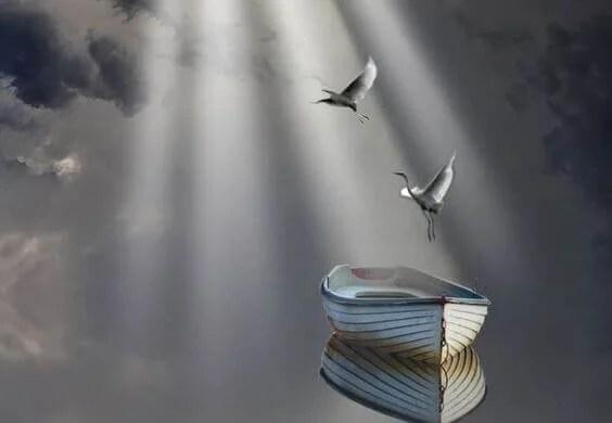 Pájaros volando simbolizando frases que te ayudarán a perdonar