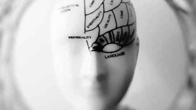 photo of head bust print artwork