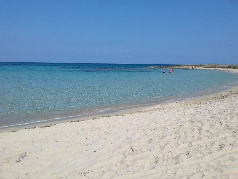 Pulizia spiagge di comunità: il 10 Marzo a Torre Guaceto