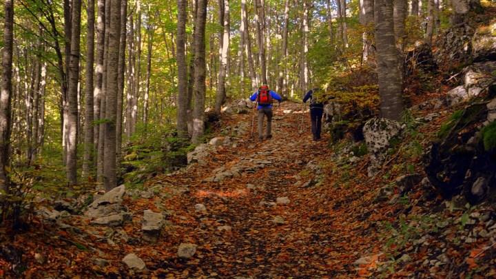 Il primo Nordic Walking Park pugliese è sul Gargano