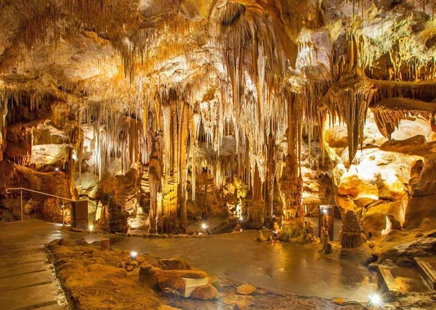 Promo Castellana Grotte: il sito per conoscere Le Grotte e dintorni