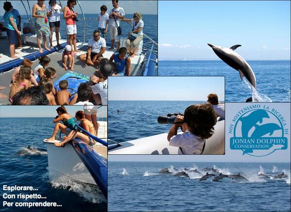 Jonian Dolphin Conservation a Taranto: ecco come partecipare attivamente alle attività di ricerca in barca