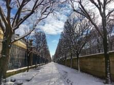 the parisienne - @zeparisienne - 8 feb