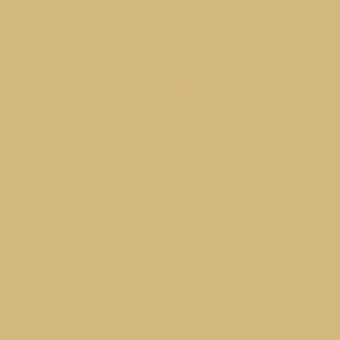 Champagne Gold Colour Midway Media