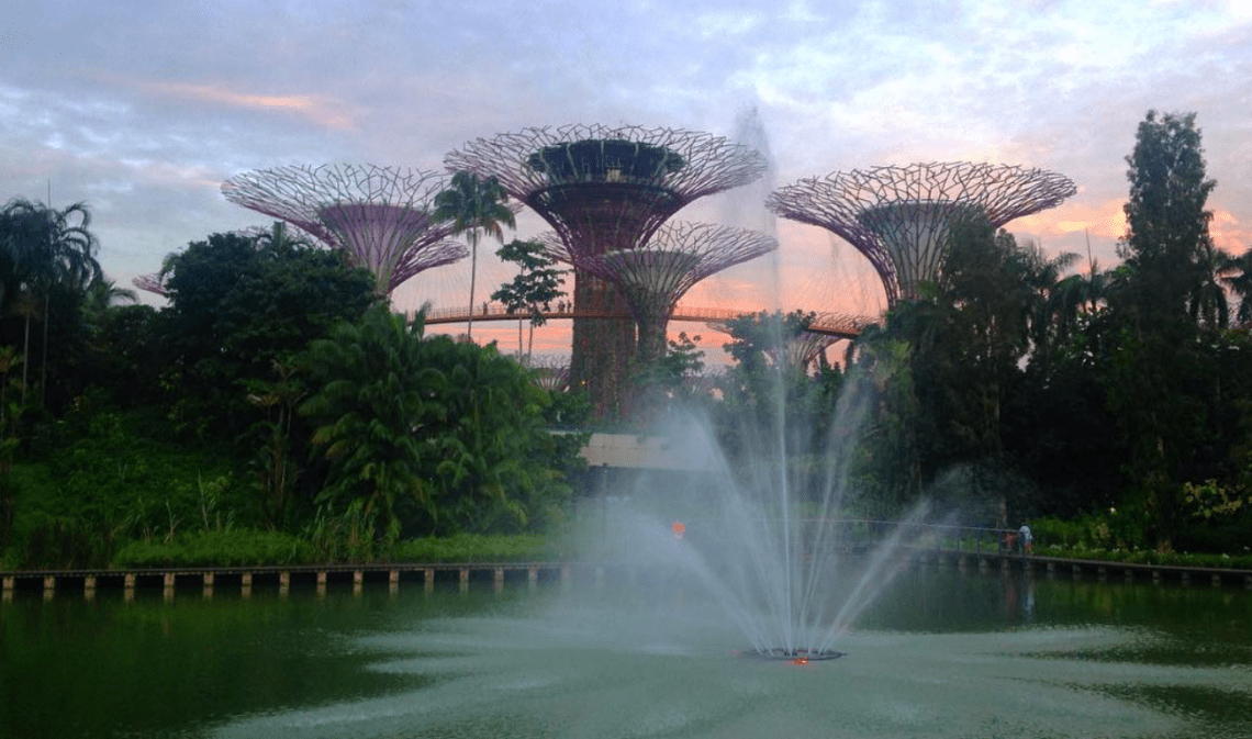 Gardens by the bay et Singapour fauché