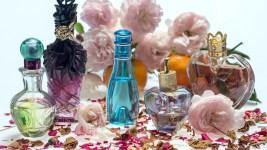 Où acheter son parfum préféré sans se ruiner ?