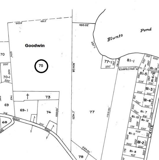 Map1Lot75Goodwin
