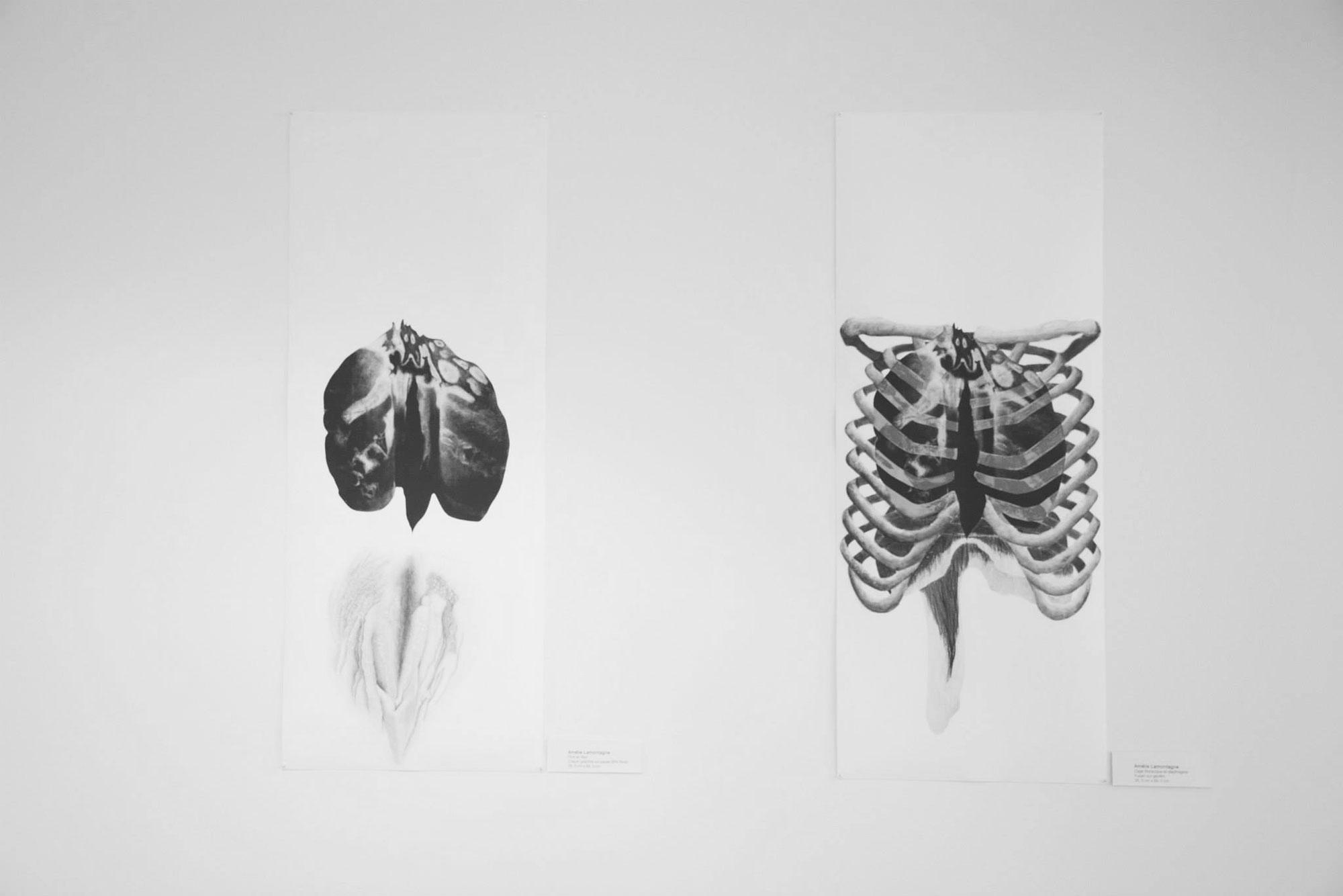 Exposition solo - Amélie Lamontagne artiste - La Montagne Ô