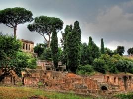 Hillside in Rome