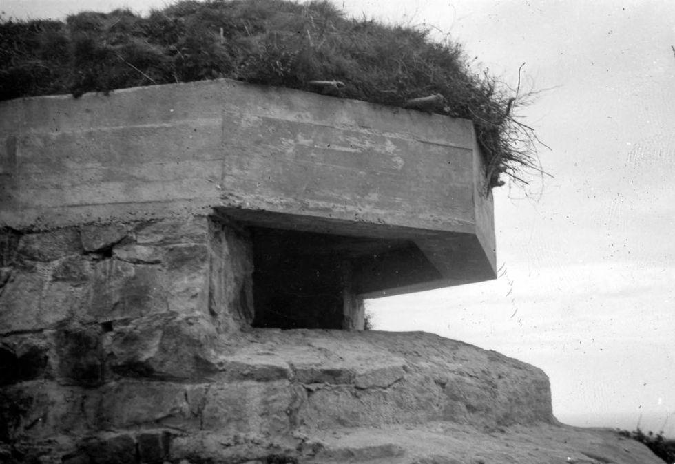 Restos de la fortificación del Cinturón de Hierro