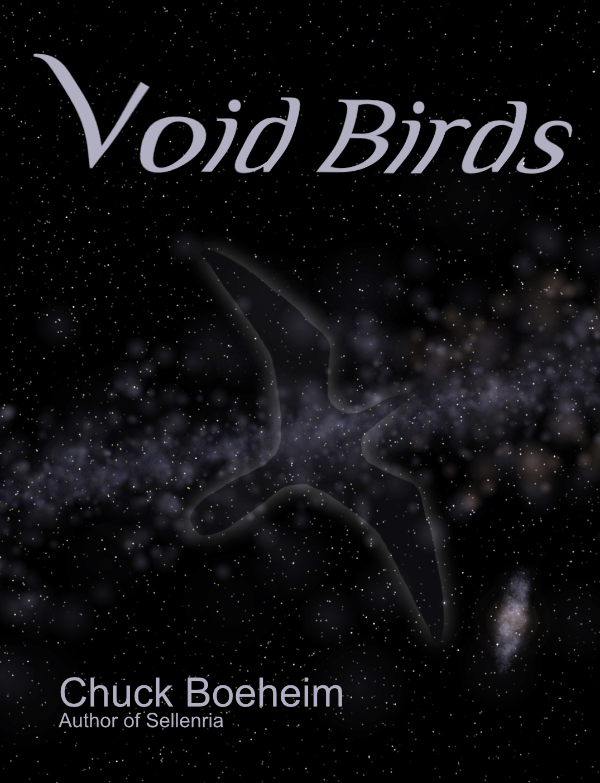 Void Birds Book Cover